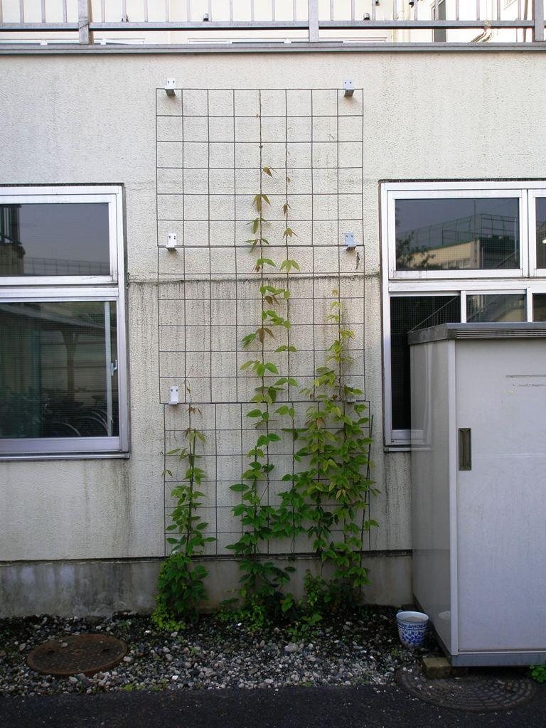 2012.05.24-2前田病院